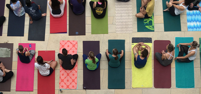 A group class for beginner yoga students.