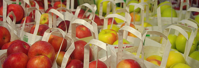 A close up shot of bagged apples in different varieties