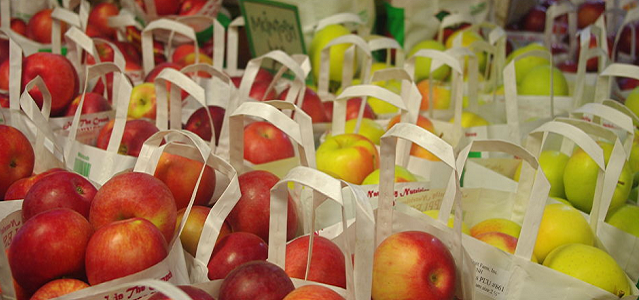 Bags of crisp and colorful apples at a local Boston farm stand.