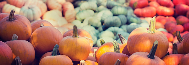 Colorful selection of Autumn-themed vegetables including pumpkin and squash