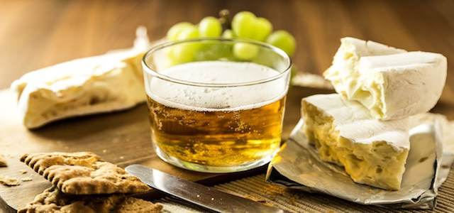 A sample glass of beer and pieces of creamy cheese.