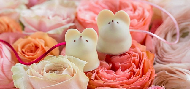 Two white chocolate mice from L.A. Burdick sitting on pink roses.