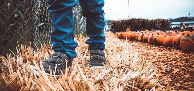 kids feet walking on hay in the pumpkin patch