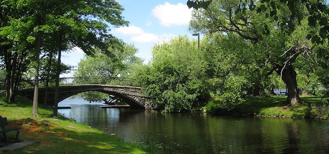 charles river bridge surrounded by summer trees and a flowing river.